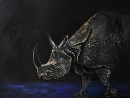 Rhino sized.jpg